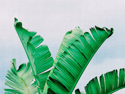 Watercolor Palm Leaves II